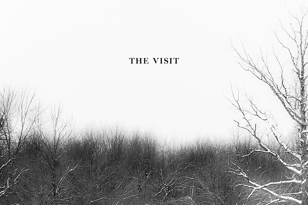thevisit
