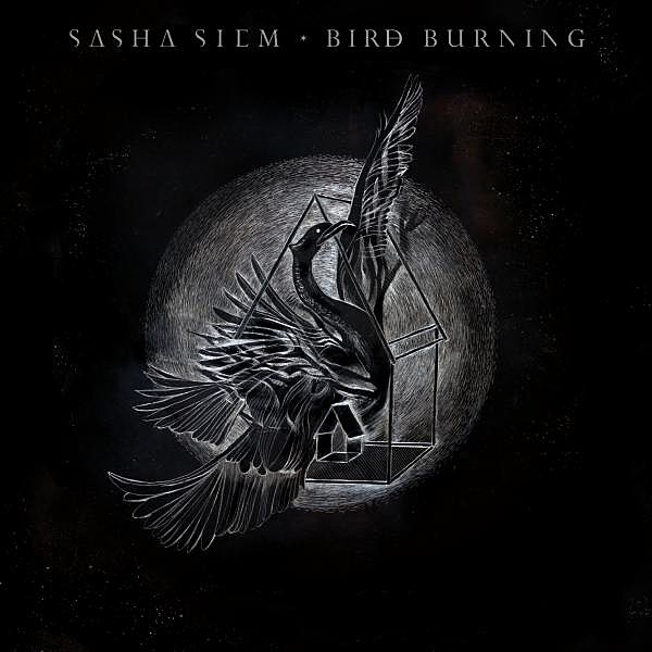 sasha siem bird burning