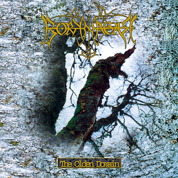 A Tale of Pagan Tongue: Borknagar?s ?The Olden Domain? Turns 20