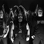 Interview: Cianide